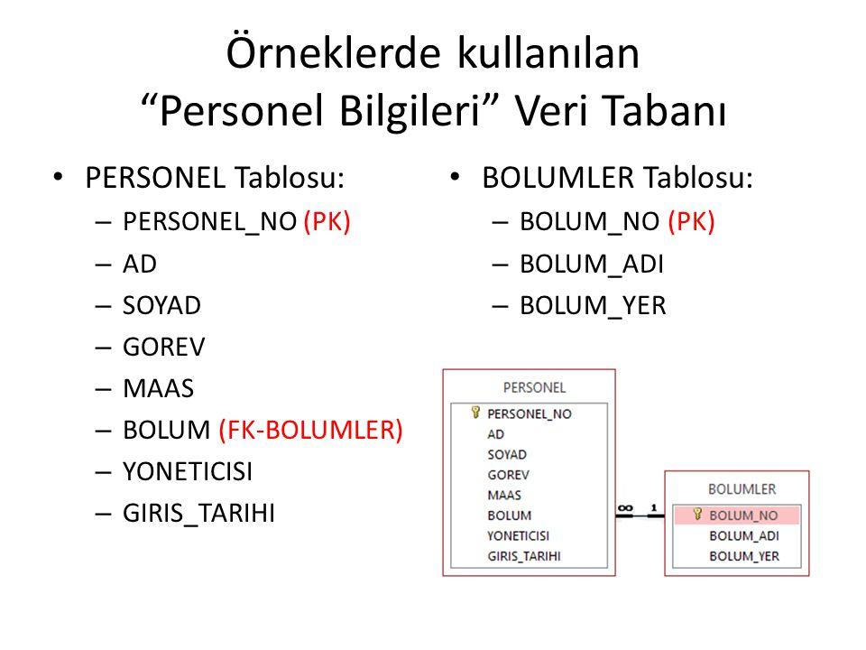 Örneklerde kullanılan Personel Bilgileri Veri Tabanı