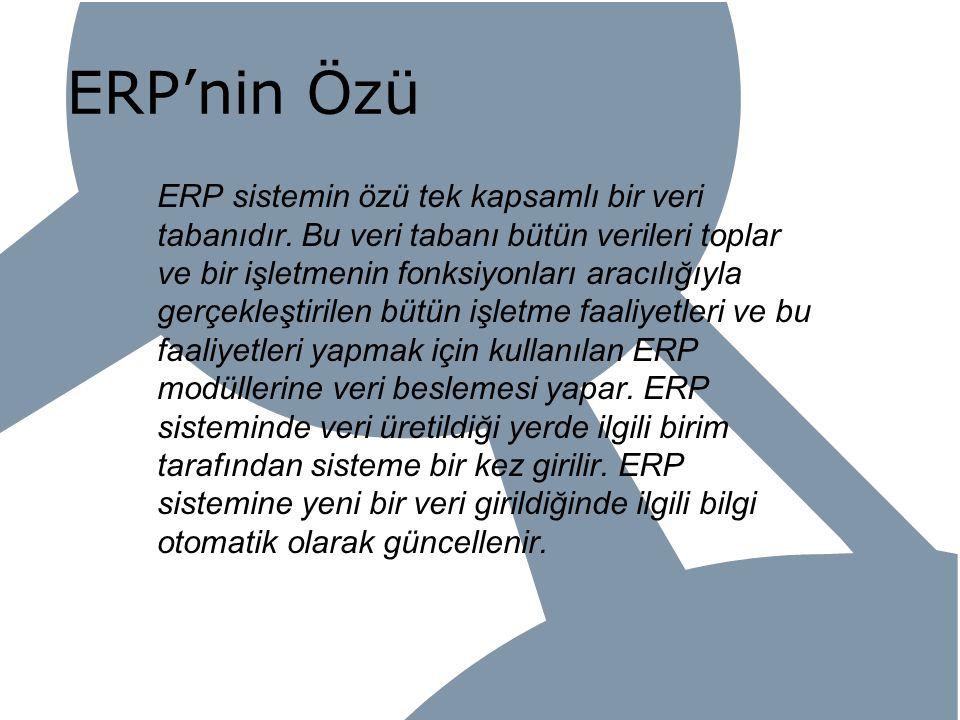 ERP'nin Özü