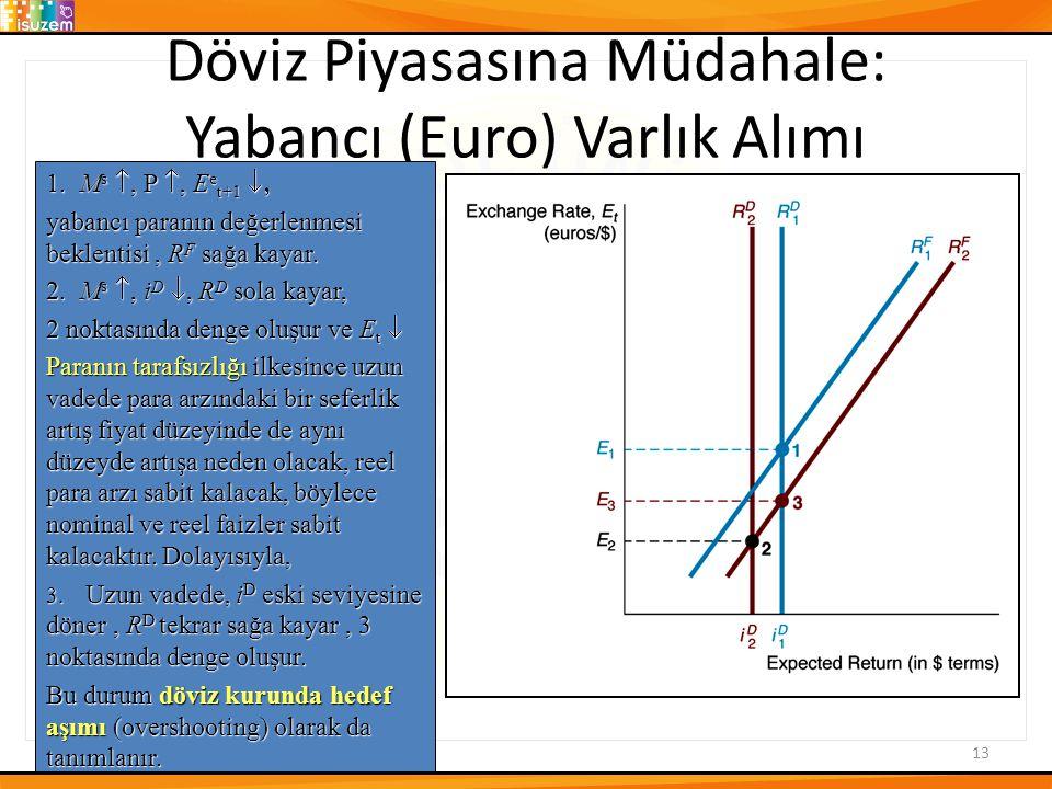 Döviz Piyasasına Müdahale: Yabancı (Euro) Varlık Alımı