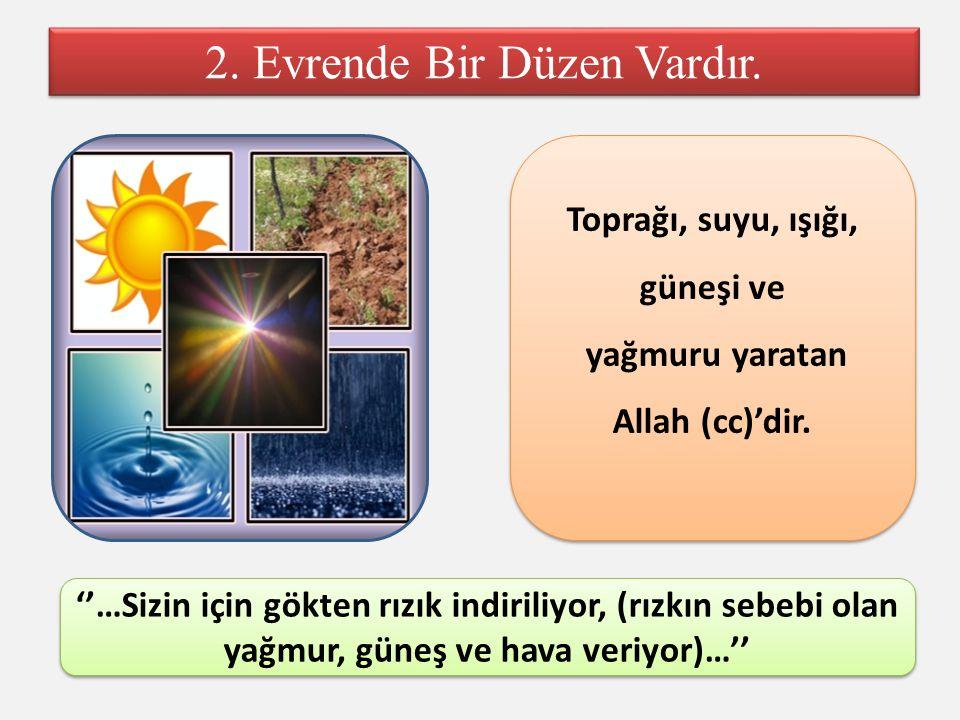 Toprağı, suyu, ışığı, güneşi ve yağmuru yaratan Allah (cc)'dir.