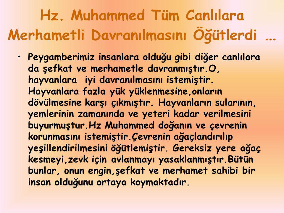 Hz. Muhammed Tüm Canlılara Merhametli Davranılmasını Öğütlerdi …