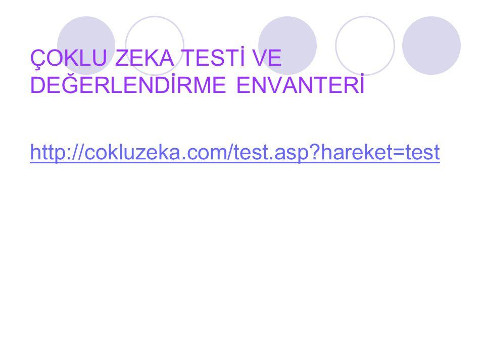 ÇOKLU ZEKA TESTİ VE DEĞERLENDİRME ENVANTERİ