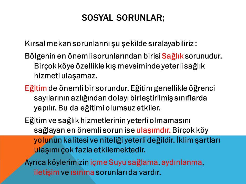 SOSYAL SORUNLAR;