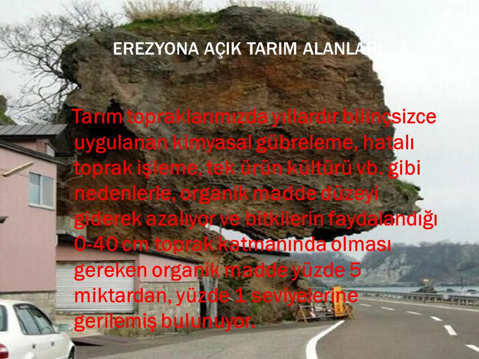 EREZYONA AÇIK TARIM ALANLARI