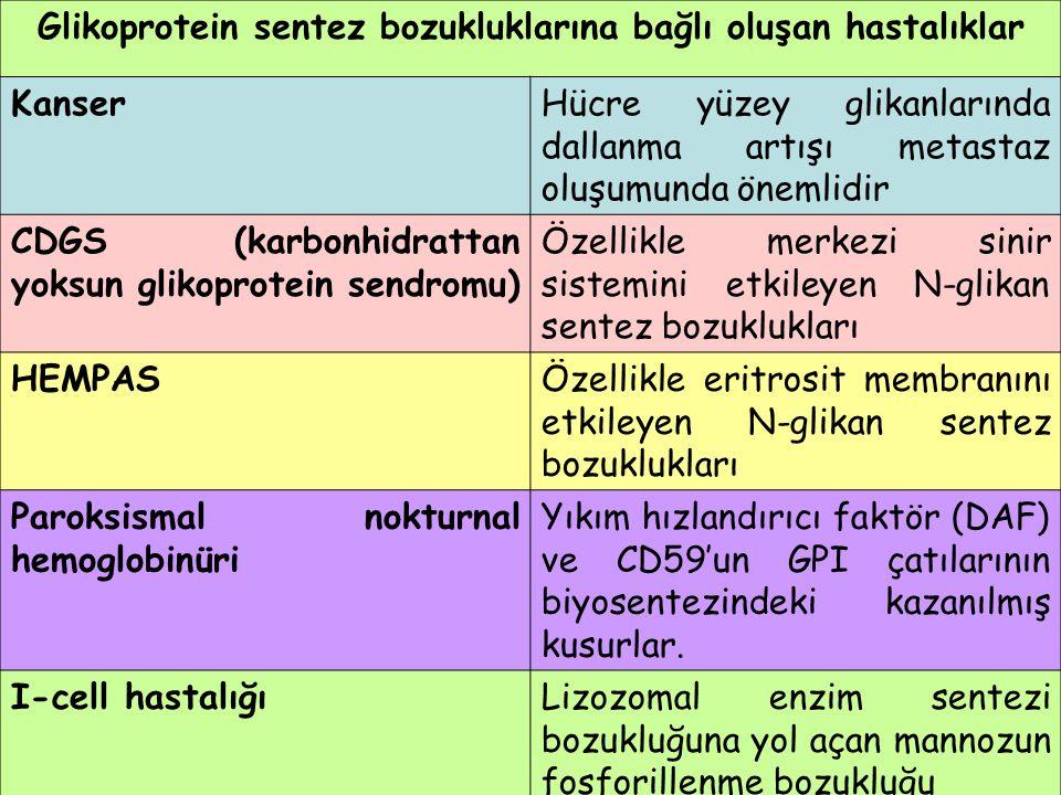 Glikoprotein sentez bozukluklarına bağlı oluşan hastalıklar
