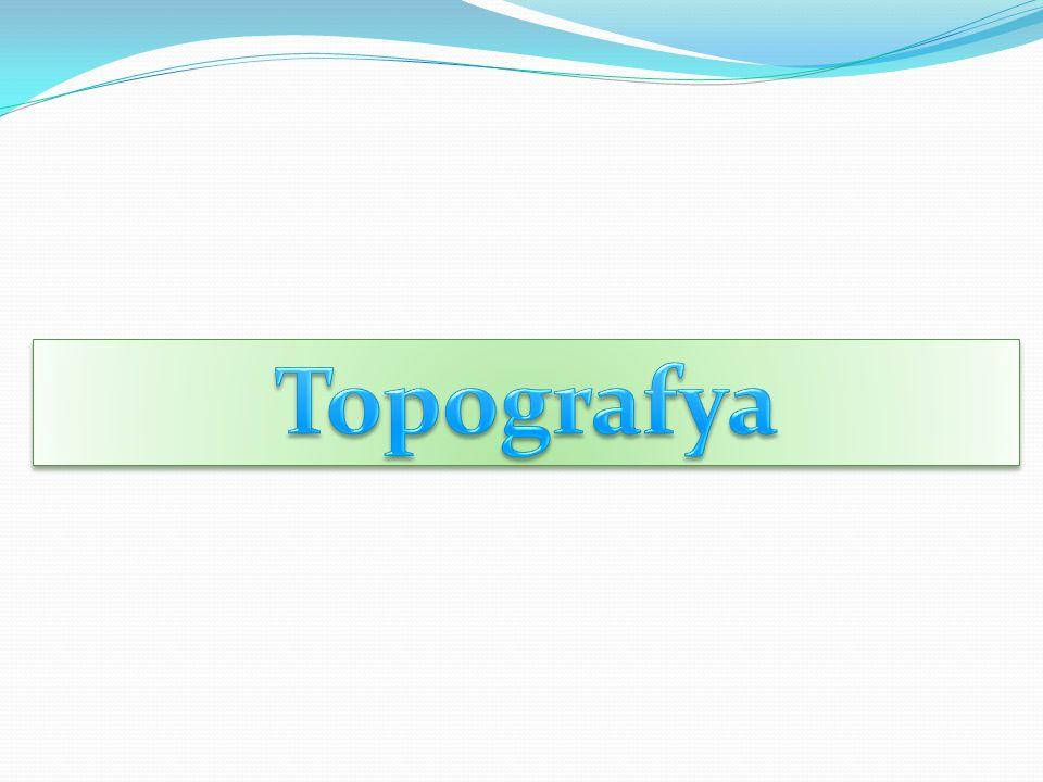 Topografya