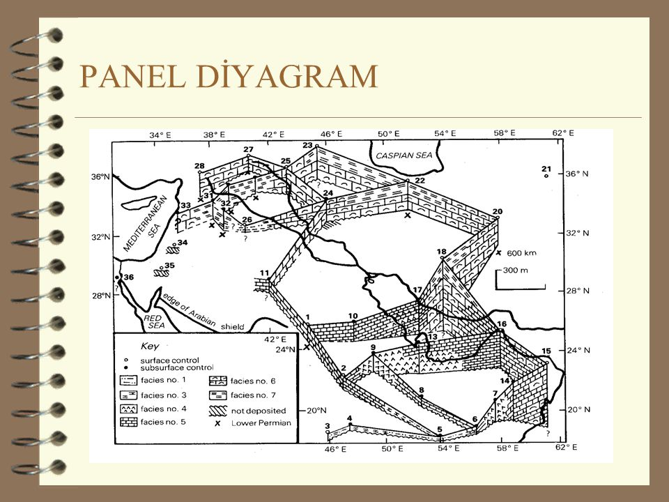 PANEL DİYAGRAM