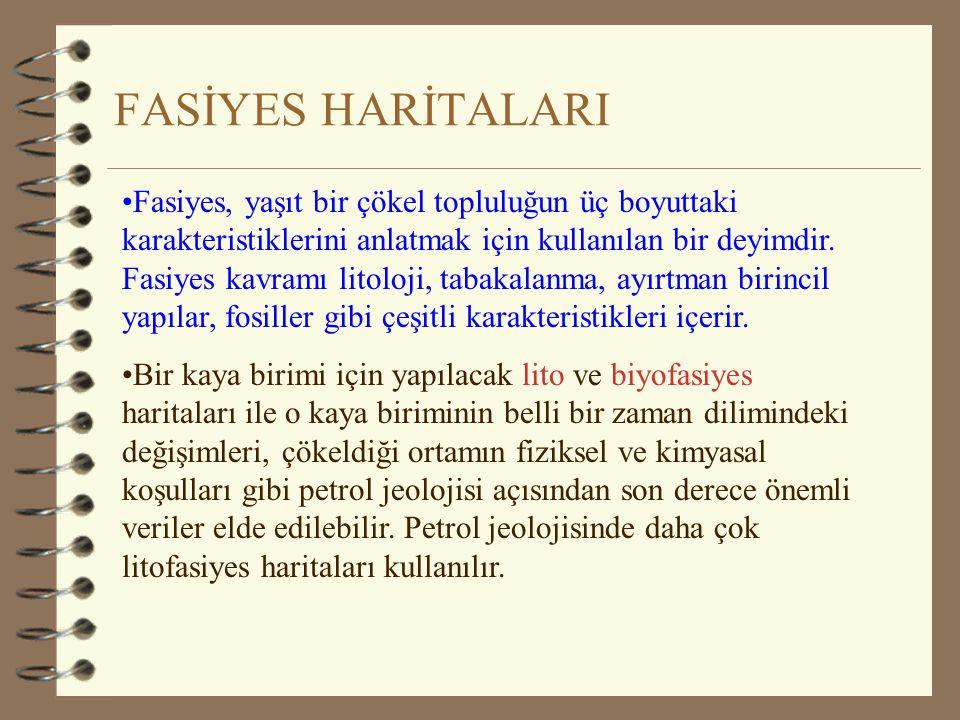 FASİYES HARİTALARI