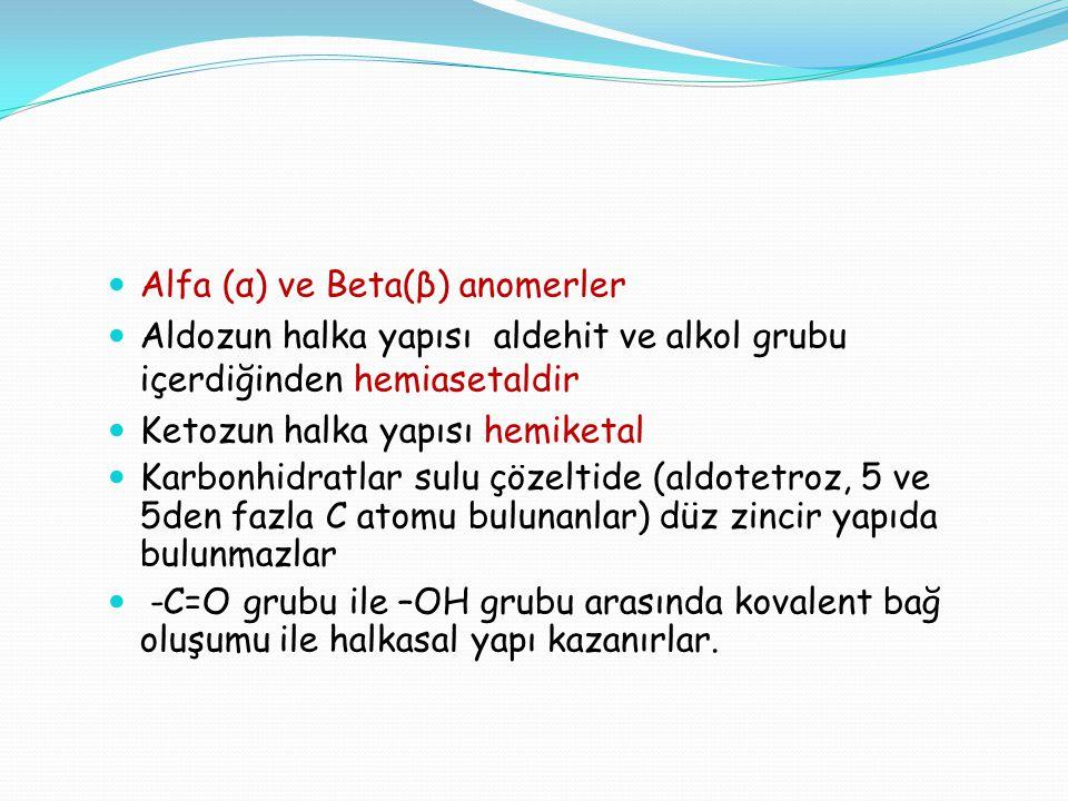 Alfa (α) ve Beta(β) anomerler