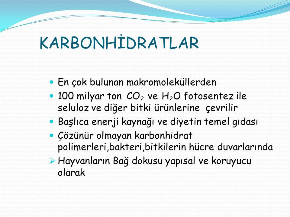 KARBONHİDRATLAR En çok bulunan makromoleküllerden