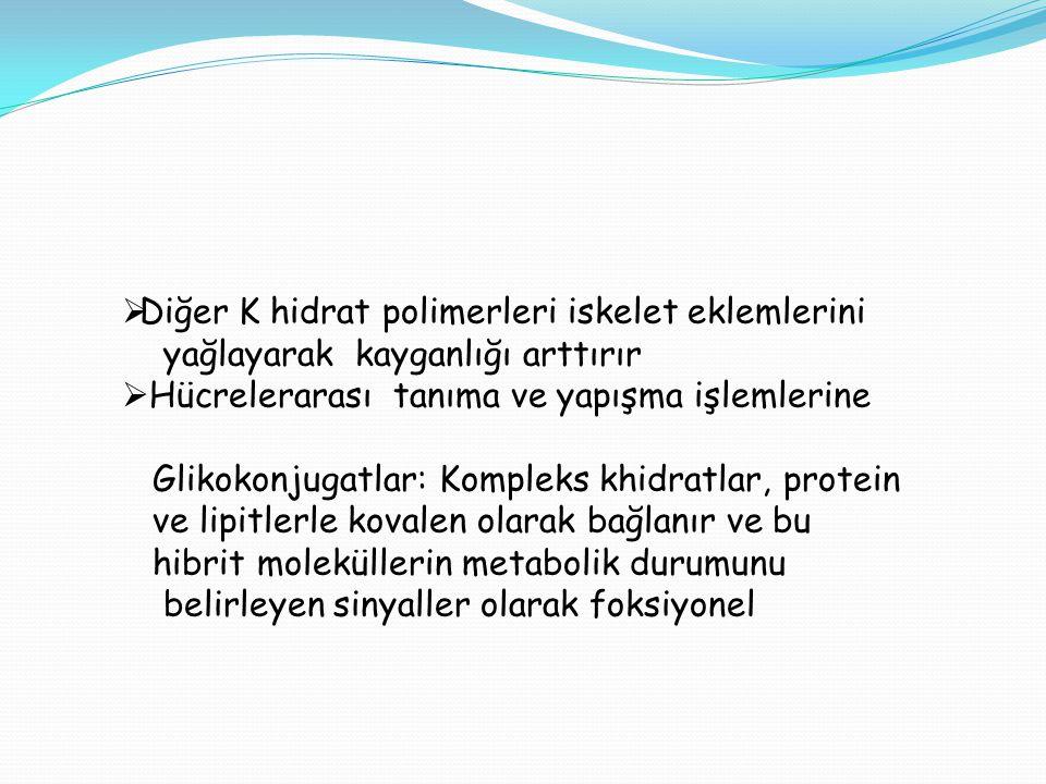Diğer K hidrat polimerleri iskelet eklemlerini