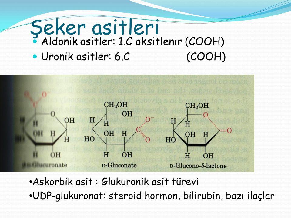 Şeker asitleri Aldonik asitler: 1.C oksitlenir (COOH)