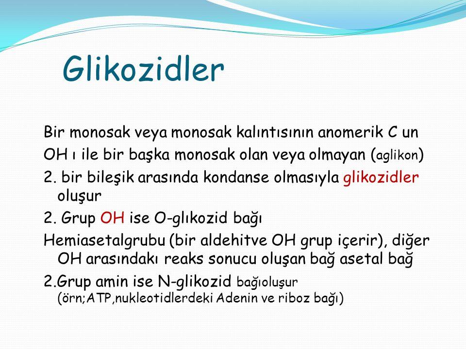 Glikozidler Bir monosak veya monosak kalıntısının anomerik C un