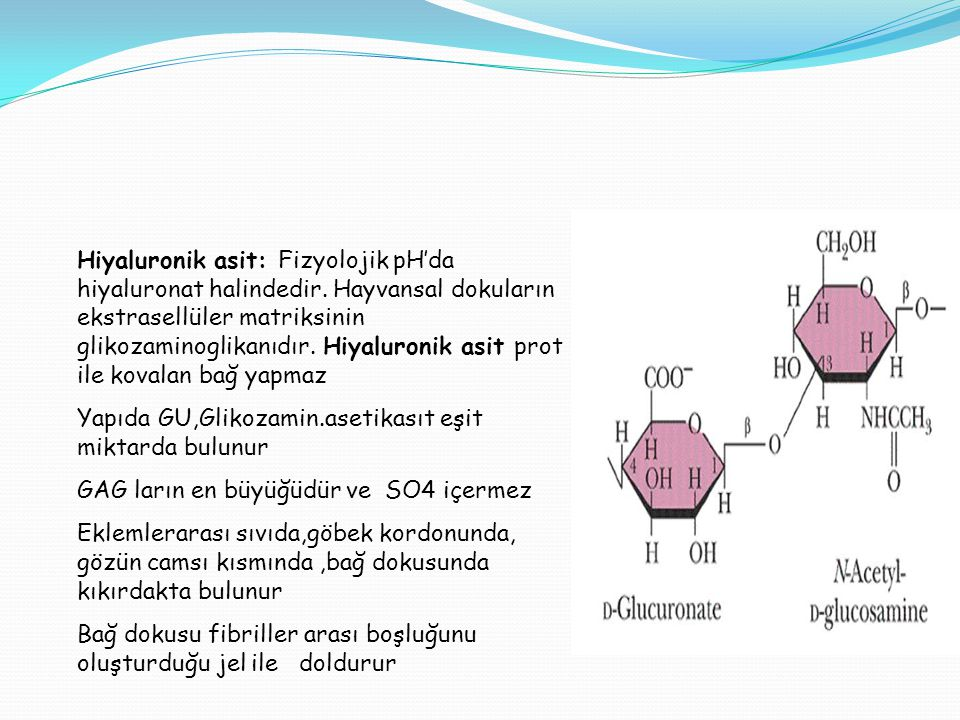 Hiyaluronik asit: Fizyolojik pH'da hiyaluronat halindedir