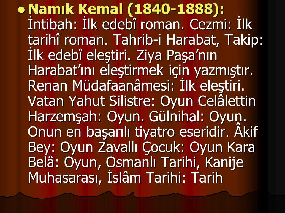 Namık Kemal (1840-1888): İntibah: İlk edebî roman