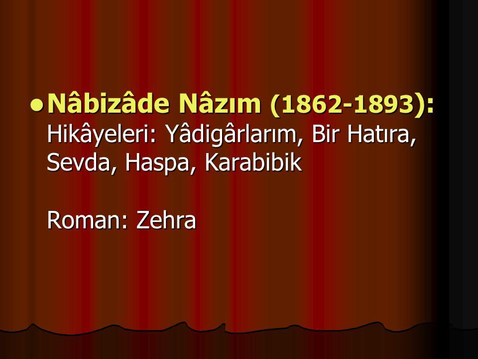Nâbizâde Nâzım (1862-1893): Hikâyeleri: Yâdigârlarım, Bir Hatıra, Sevda, Haspa, Karabibik Roman: Zehra