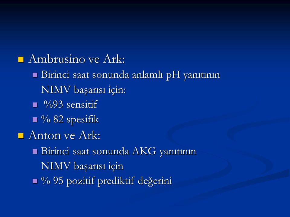Ambrusino ve Ark: Anton ve Ark:
