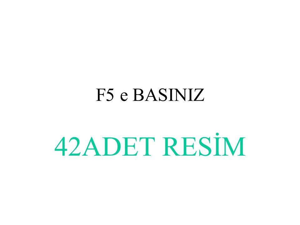 F5 e BASINIZ 42ADET RESİM