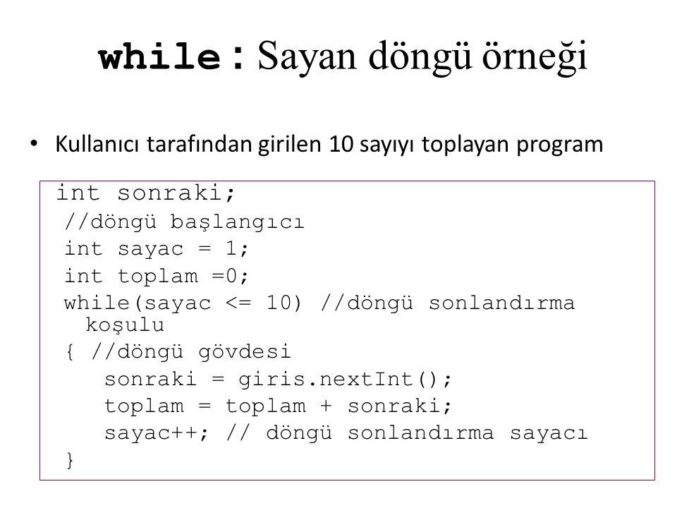 while : Sayan döngü örneği