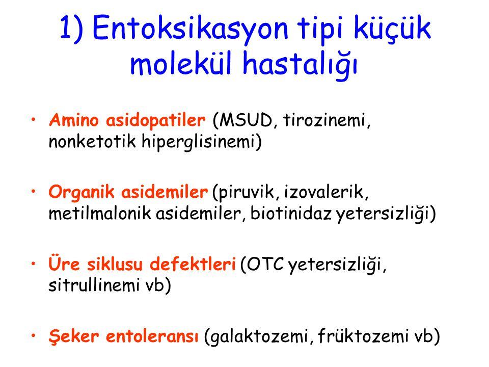 1) Entoksikasyon tipi küçük molekül hastalığı