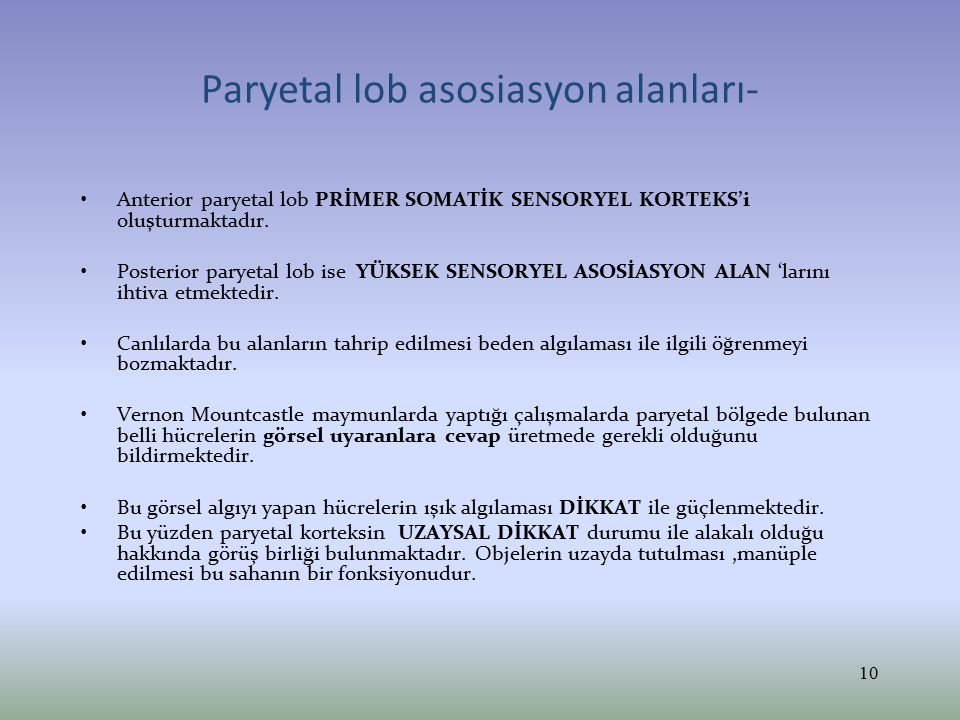 Paryetal lob asosiasyon alanları-
