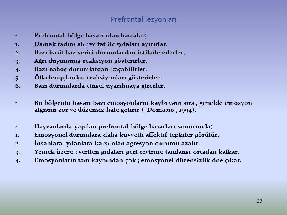 Prefrontal lezyonları