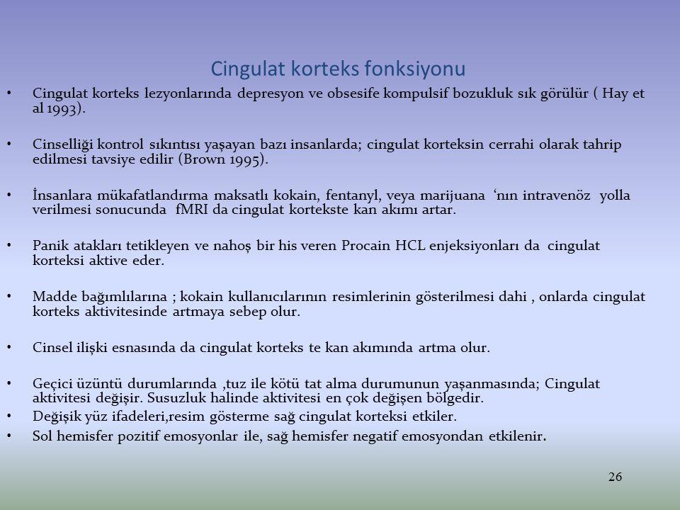 Cingulat korteks fonksiyonu