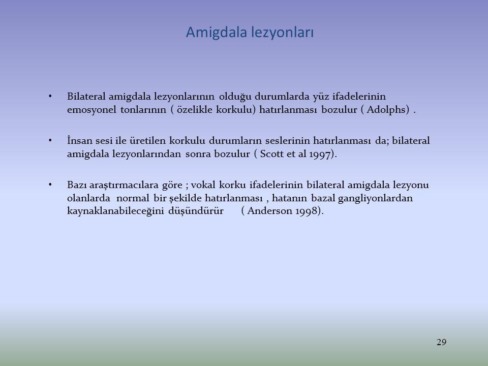 Amigdala lezyonları
