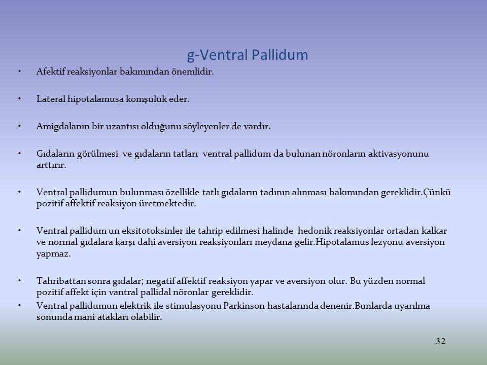 g-Ventral Pallidum Afektif reaksiyonlar bakımından önemlidir.