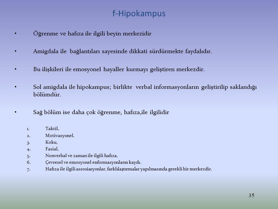 f-Hipokampus Öğrenme ve hafıza ile ilgili beyin merkezidir