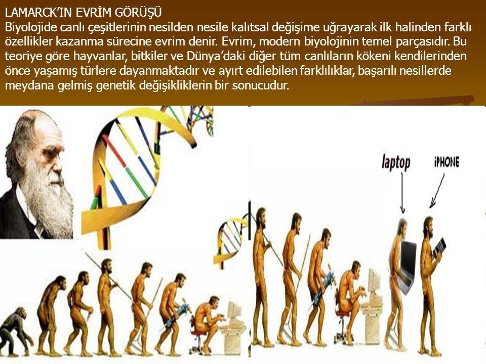 LAMARCK'IN EVRİM GÖRÜŞÜ Biyolojide canlı çeşitlerinin nesilden nesile kalıtsal değişime uğrayarak ilk halinden farklı özellikler kazanma sürecine evrim denir.