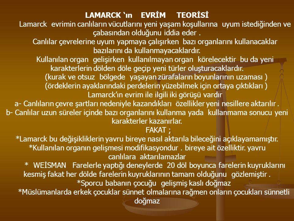 LAMARCK 'ın EVRİM TEORİSİ