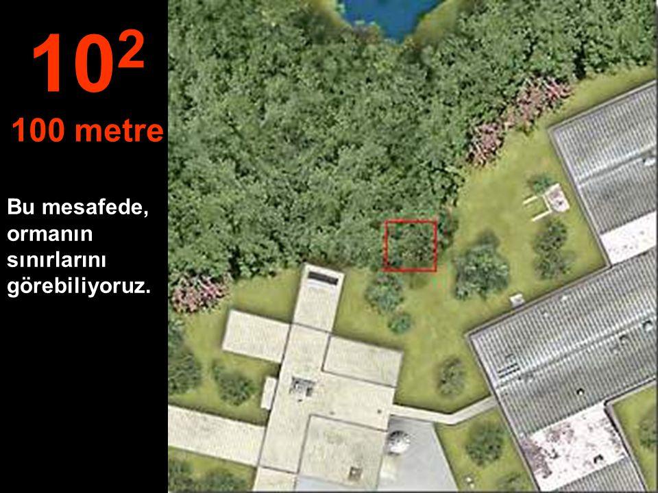 102 100 metre Bu mesafede, ormanın sınırlarını görebiliyoruz.