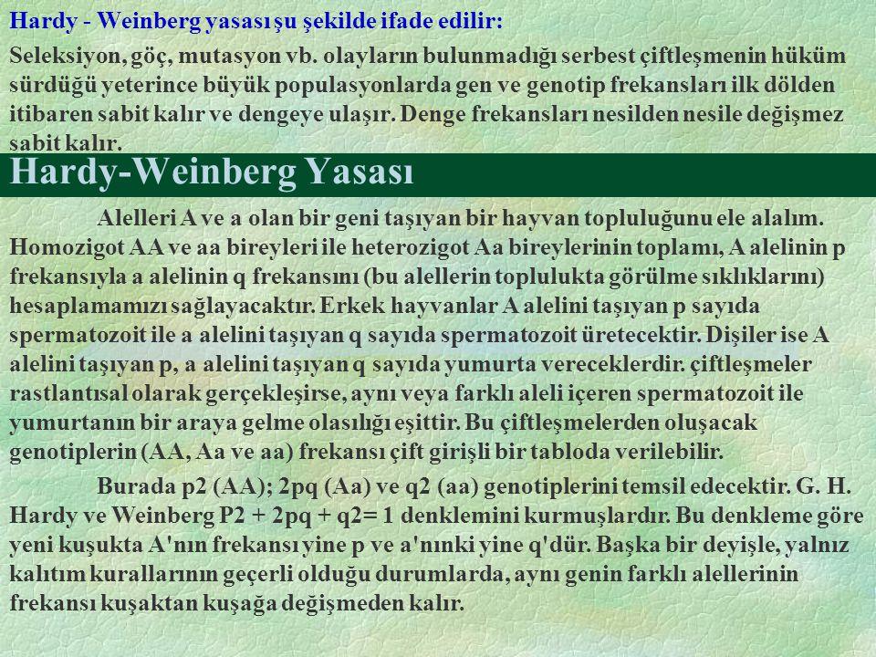 Hardy-Weinberg Yasası