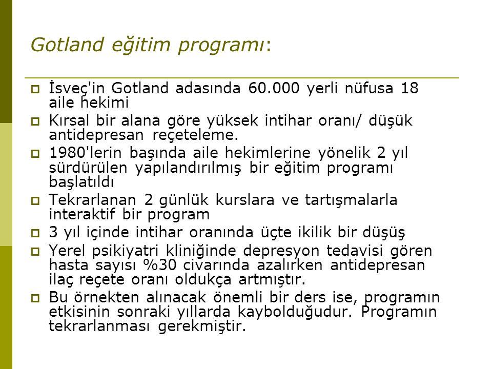 Gotland eğitim programı: