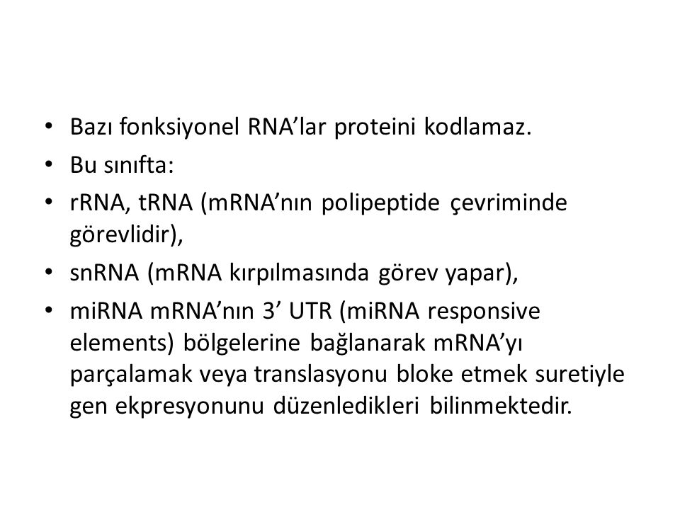 Bazı fonksiyonel RNA'lar proteini kodlamaz.