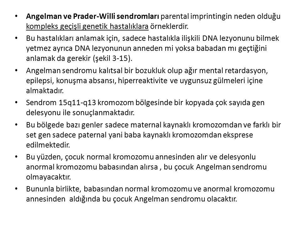 Angelman ve Prader-Willi sendromları parental imprintingin neden olduğu kompleks geçişli genetik hastalıklara örneklerdir.
