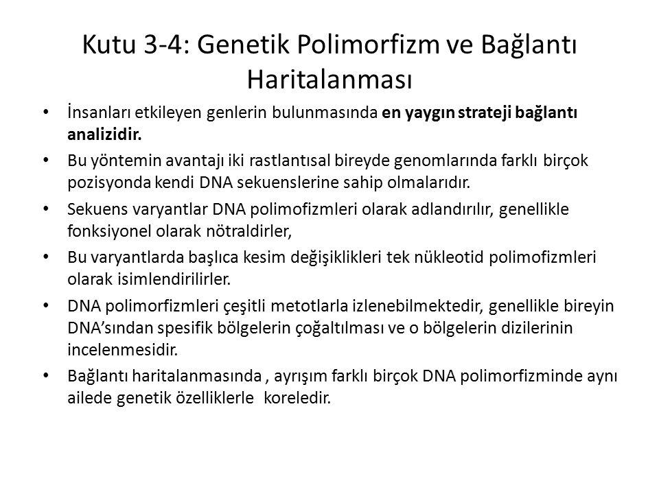Kutu 3-4: Genetik Polimorfizm ve Bağlantı Haritalanması