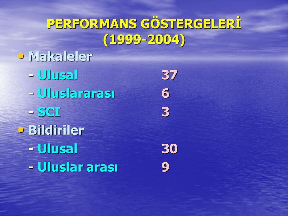 PERFORMANS GÖSTERGELERİ (1999-2004)