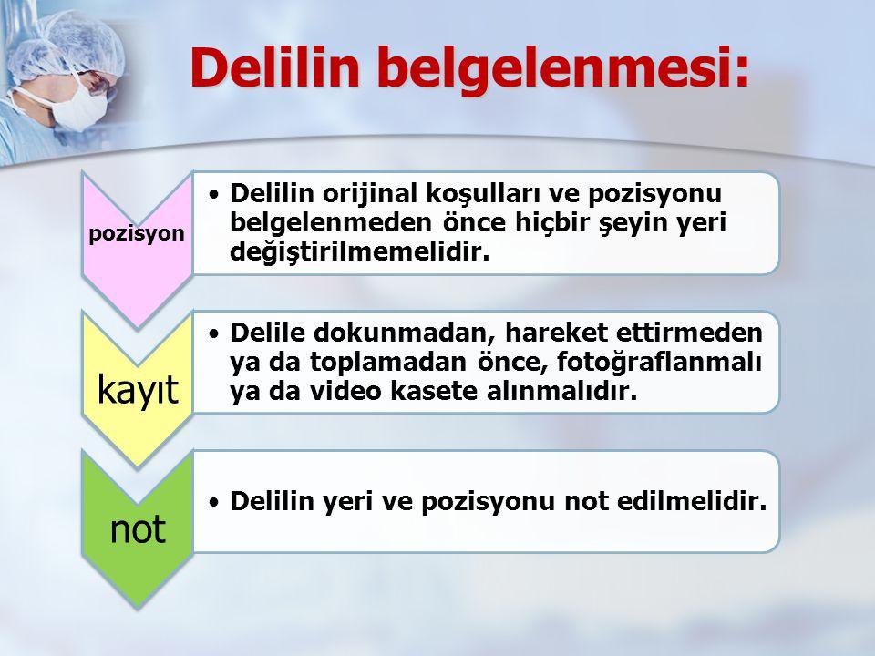Delilin belgelenmesi: