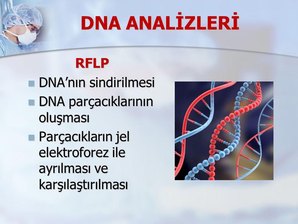 DNA ANALİZLERİ RFLP DNA'nın sindirilmesi DNA parçacıklarının oluşması