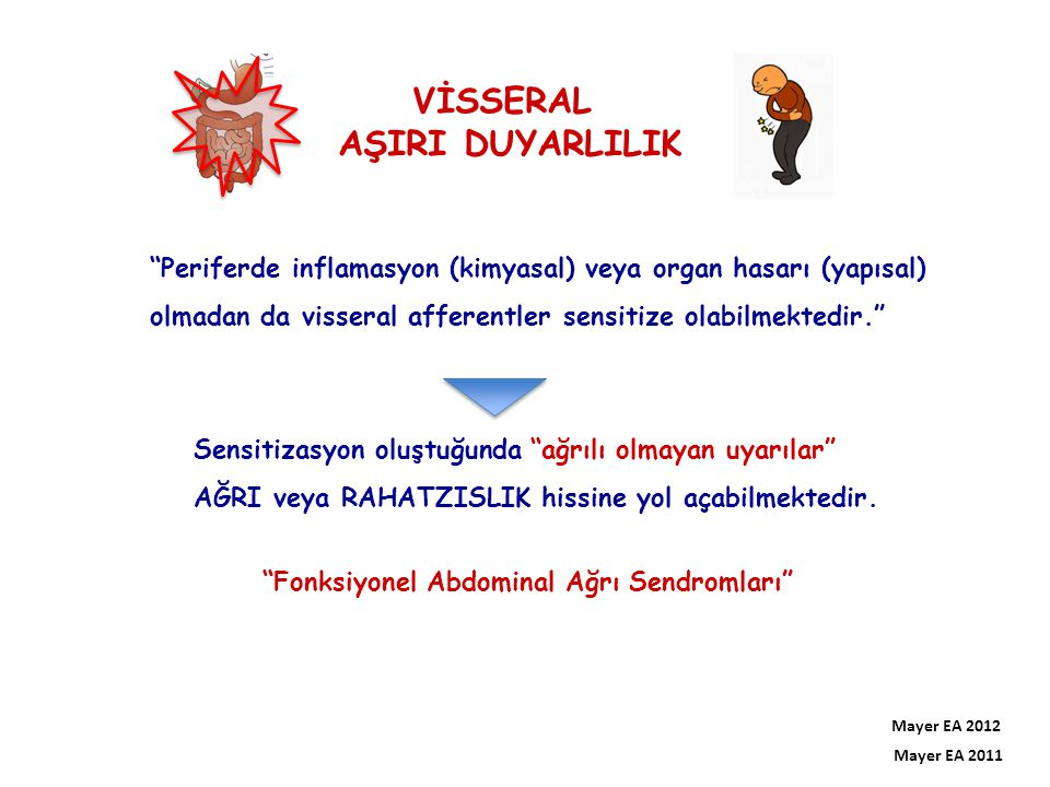 VİSSERAL AŞIRI DUYARLILIK