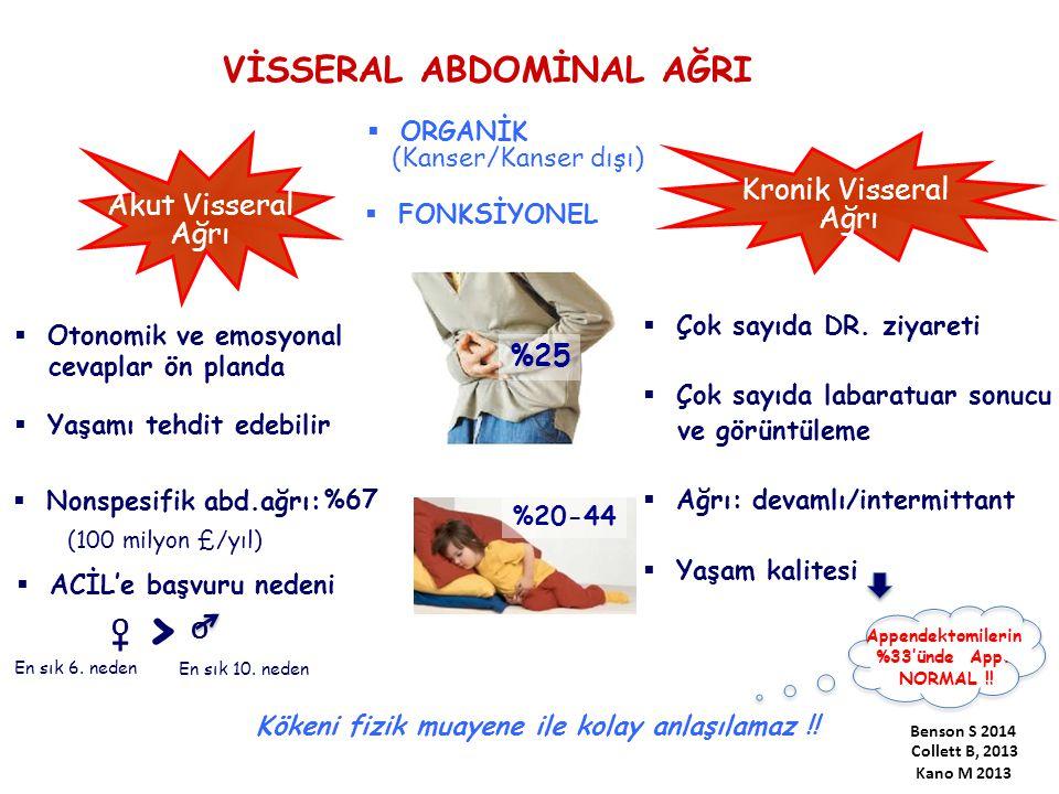 > VİSSERAL ABDOMİNAL AĞRI + Kronik Visseral Akut Visseral Ağrı Ağrı