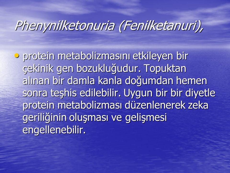 Phenynilketonuria (Fenilketanuri),