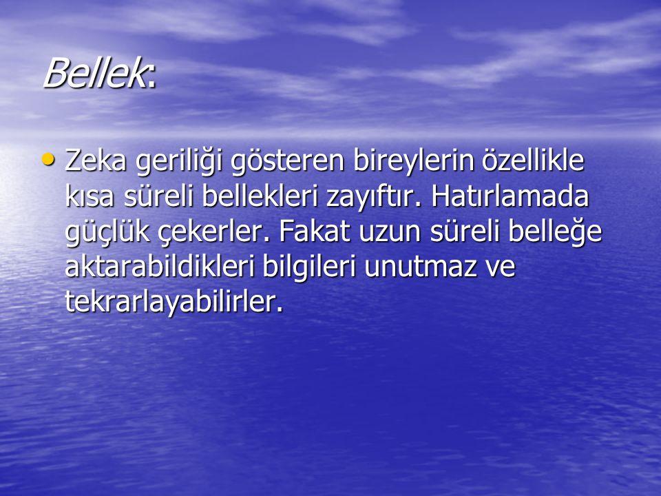 Bellek: