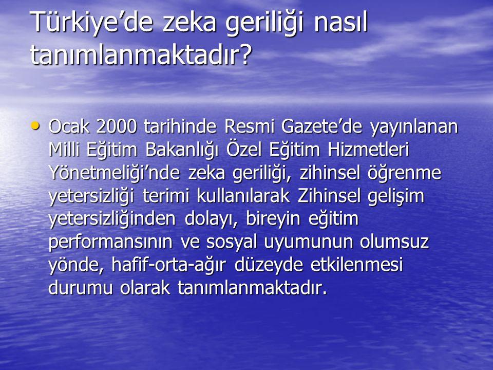 Türkiye'de zeka geriliği nasıl tanımlanmaktadır