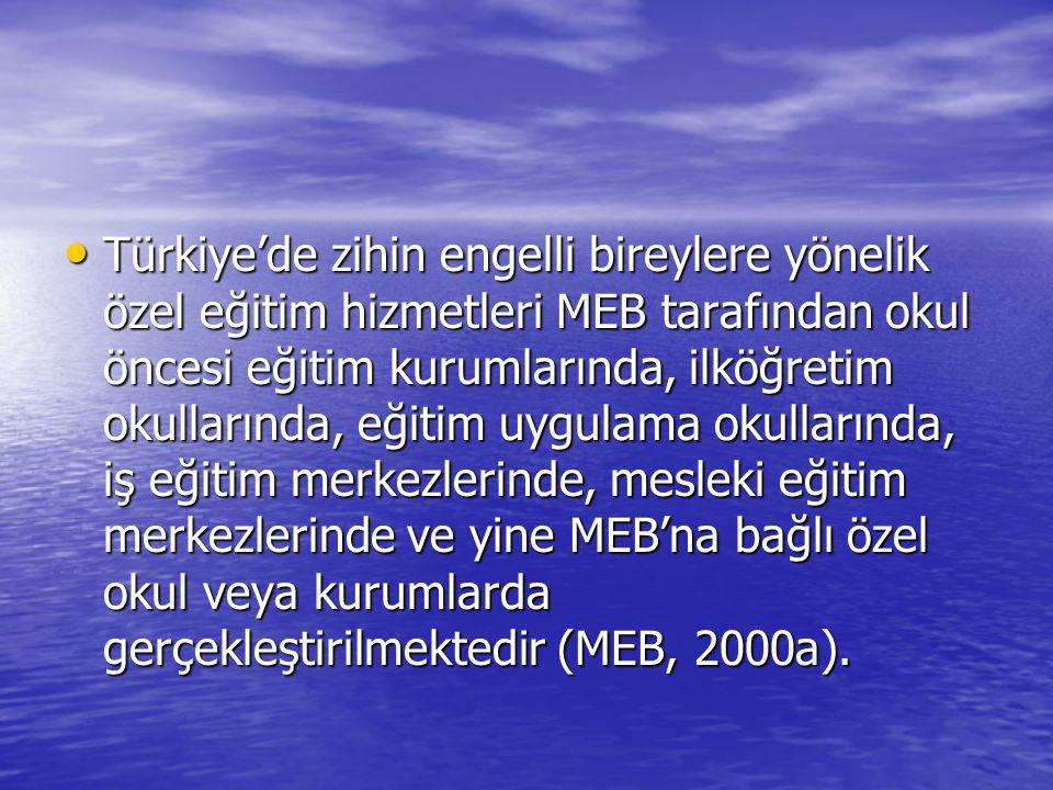 Türkiye'de zihin engelli bireylere yönelik özel eğitim hizmetleri MEB tarafından okul öncesi eğitim kurumlarında, ilköğretim okullarında, eğitim uygulama okullarında, iş eğitim merkezlerinde, mesleki eğitim merkezlerinde ve yine MEB'na bağlı özel okul veya kurumlarda gerçekleştirilmektedir (MEB, 2000a).
