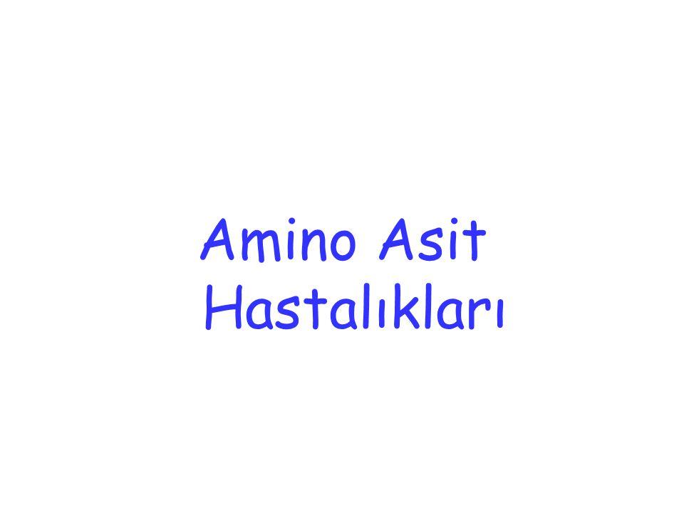 Amino Asit Hastalıkları