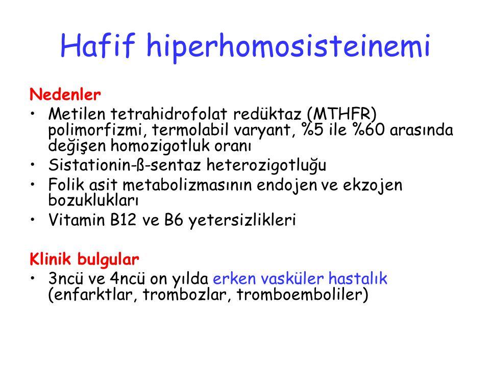 Hafif hiperhomosisteinemi