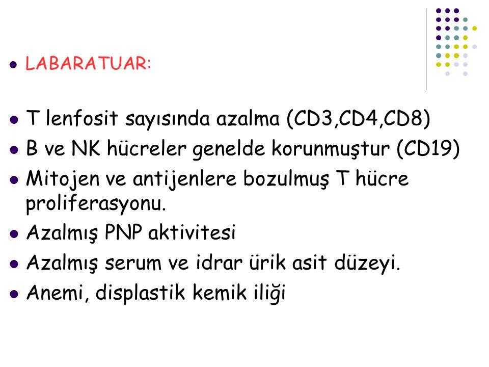 T lenfosit sayısında azalma (CD3,CD4,CD8)